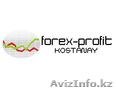 Forex-Profit.Kostanay - Деловые услуги