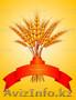 Пшеница, зерно, лен, рапс